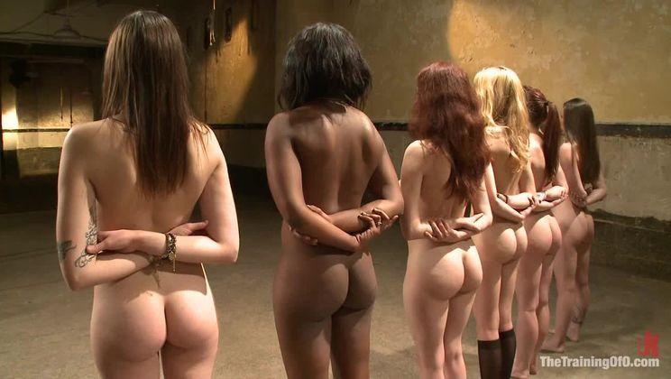 Black Guy White Girl Love
